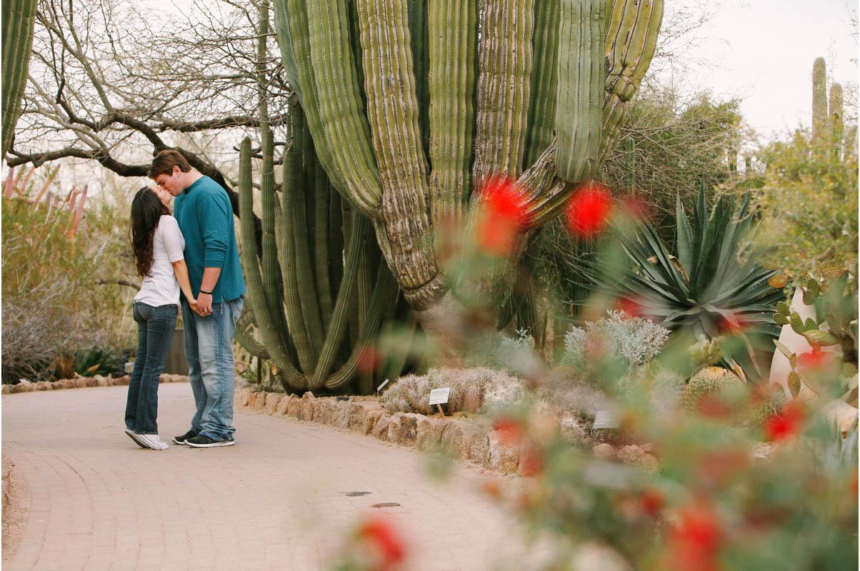 desertbotanical26